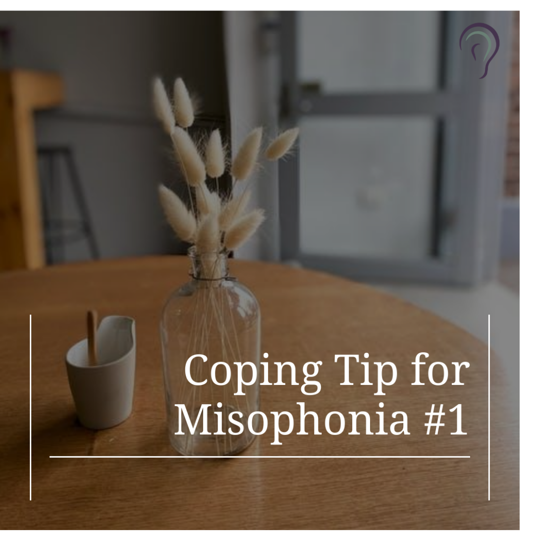 Coping Tip for Misophonia #1 PNG